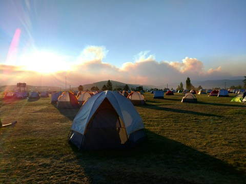 Festival organisers want single use tents banned to reduce plastic waste