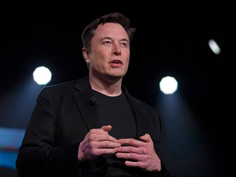 Elon Musk's Neuralink is about to reveal big news about the plot to plug our brains into computers