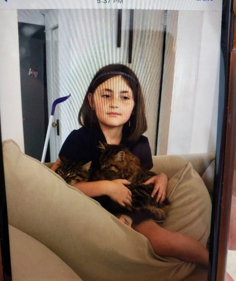 An Amber Alert has been issued for Salem Sabatka who was kidnapped by an 'unknown light skinned black male' while on a walk with her mother in Fort Worth The man grabbed Salem and her mother jumped into the car in an attempt to rescue her daughter, but the man pushed her out and drove off