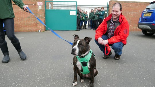 Star is finally being loved and cared for by a new owner