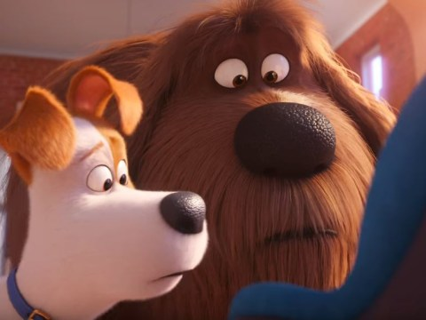 The Secret Life Of Pets 2 outdoes original film as Tiffany Haddish and Harrison Ford steal the show