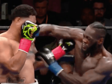 Slow motion shows devastation of Deontay Wilder's knockout of Dominic Breazeale