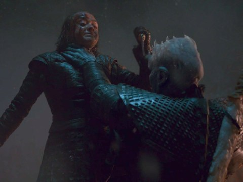 How Arya Stark killed The Night King in Game of Thrones revealed by Vladimir Furdik – but fans aren't convinced