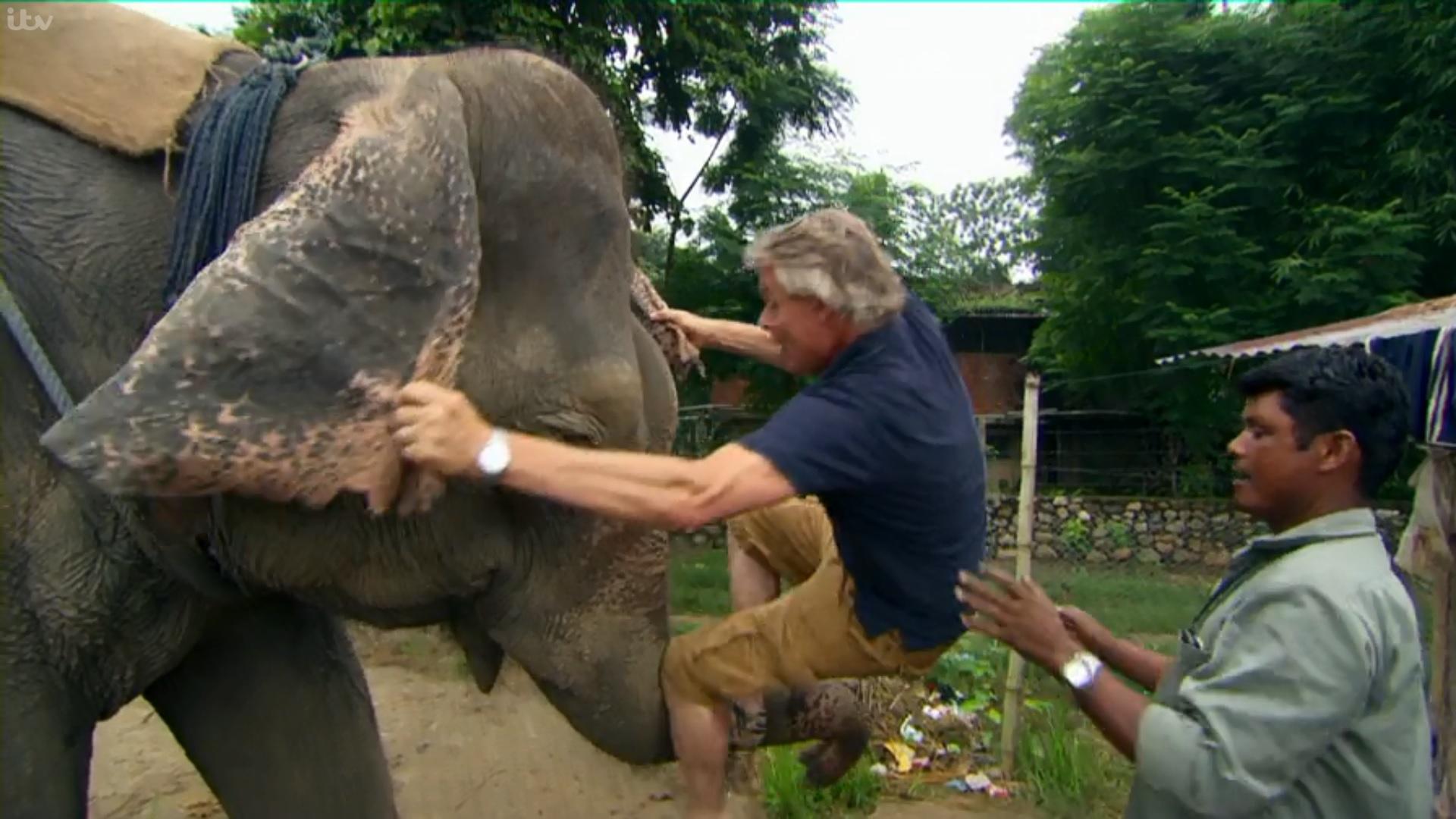 Martin Clunes rides an elephant