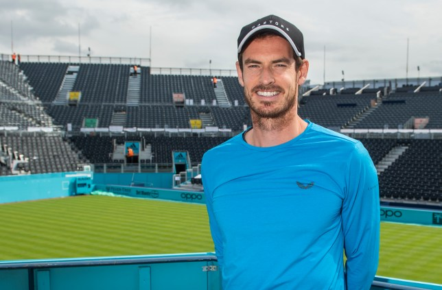 Andy Murray smiles at Queen's