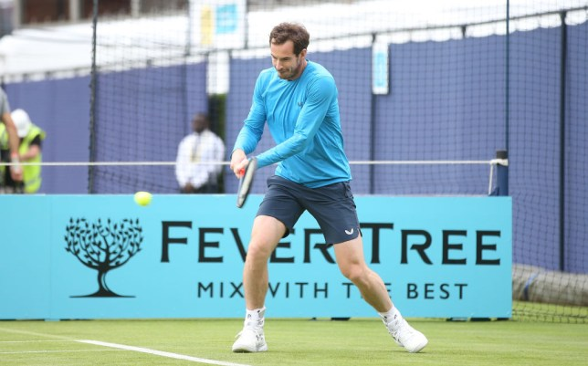 Andy Murray hits a backhand at the Fever-Tree Championships at Queen's