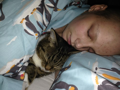 Nala the cat keeps her owner Charlotte's memory alive three years after she died from cancer at 19