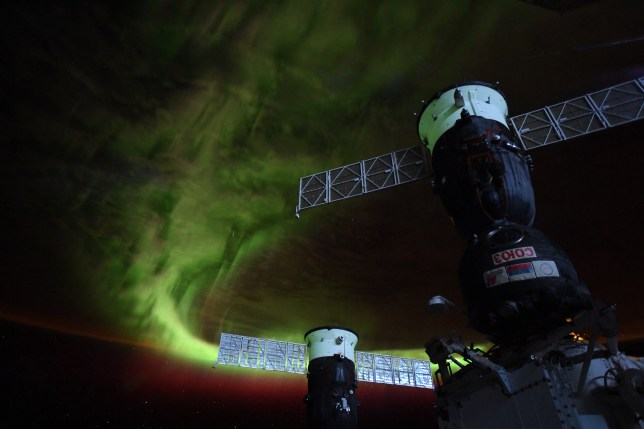 The Southern Lights, pictured from the International Space Station (Christina Koch/Twitter)