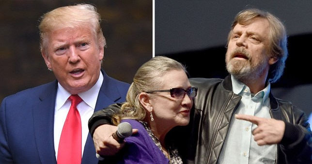 Mark Hamill lobbies for Carrie Fisher to replace Donald Trump's Hollywood Walk Of Fame star