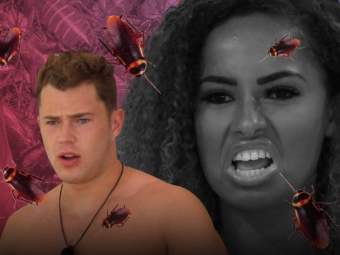 Love Island stars forced to run away from plague of flying cockroaches