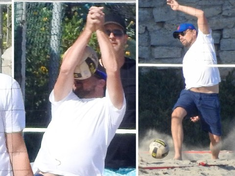 Leonardo DiCaprio getting smashed in the face by a volleyball is us trying to get through life