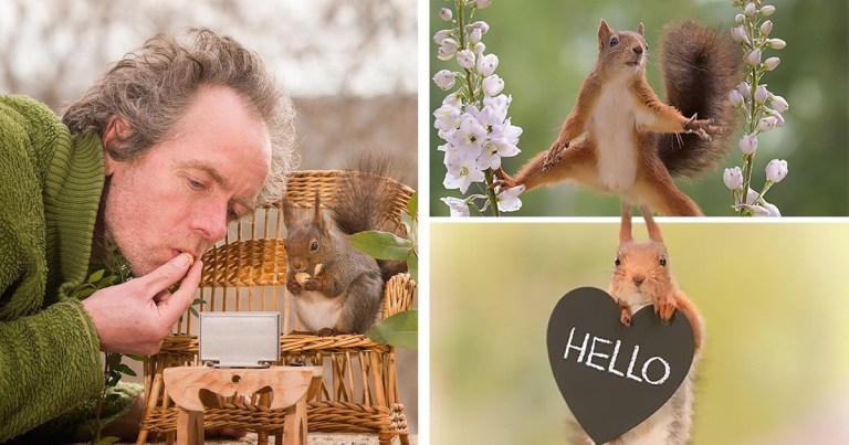 Photographer became best friends with squirrel after following him around for six years