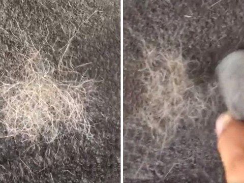 Mrs Hinch fan uses pumice stone hack to get animal hair out of carpet