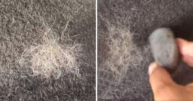 Mrs Hinch hack sees woman using pumice stone to get rid of pet hair