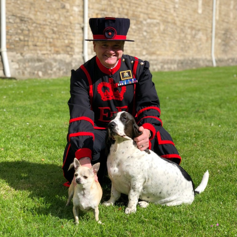 Bring your dog to work day https://twitter.com/TowerOfLondon/status/1141992146867818497 Picture: TowerOfLondon