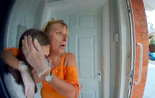 "Footage of Sharon Boalch & Shakira Jefferies when they realise that their cat Cleo was mauled to death on the driveway of their home in Worcester - The dog owner apologised on his hands and knees. A family has been left heartbroken after they watched in horror as two dogs savagely mauled their cat to death in a harrowing attack captured on camera. See SWNS story SWMDmaul. Sharon Boalch, 50, and her daughter Shakira Jefferies, 16, were left devastated after the pair of snarling Staffordshire Bull Terriers ""ripped apart"" their beloved pet Cleo. Shocking footage captured by a doorbell camera shows the moment the defenceless feline was set upon by the out-of-control mutts on the driveway of their home. The dogs' owner can be seen trying to stop the hounds as they struck on Ash Avenue, in Brickfields, Worcester last Thursday (20/6). The video then shows the man apologising to the distraught mother-and-daughter who break down in tears upon hearing the news. The owner can be heard telling the pair: ""I was in the park and my dogs were following a black cat and they killed him. I was going to take him to the vet."" At one point he even gets down on his knees and says ""I'm so sorry"" as Shakira weeps outside her house and Sharon cries out ""Dogs should be on a lead"". Shakira said she saw the dogs attacking the cat and dragging her into a nearby park but didn?t realise it was Cleo until it was too late."