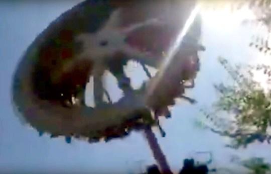 Woman, 19, dies after theme park ride breaks apart in mid
