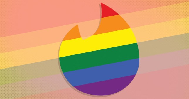 Tinder has launched a new feature for Pride Month called orientation