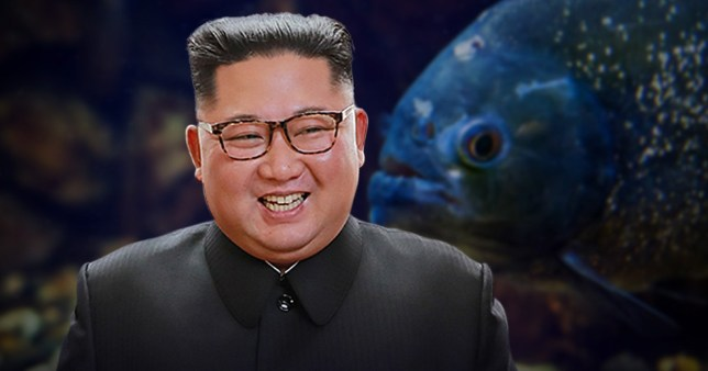 Kim Jong-un is said to have built the fish tank specifically for the execution (Picture: Getty Images)