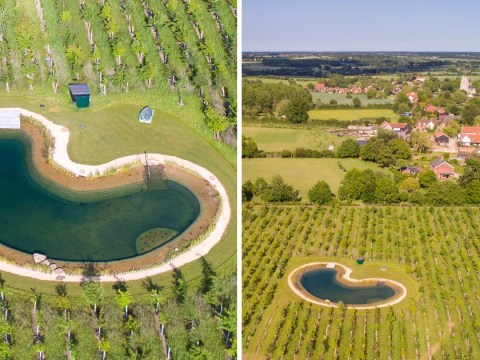Ed Sheeran 'to appeal planning permission to allow him to use £500,000 pond to swim in'