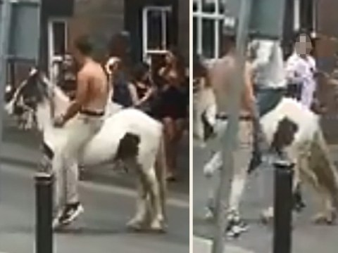 Anger over video of horse being whipped and manhandled during Appleby Horse Fair