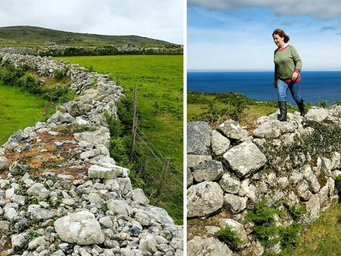 Ancient 4,000-year-old hedges under threat from developers