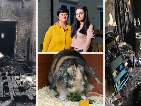Jealous ex killed teen's rabbit and set her house on fire after she rejected him