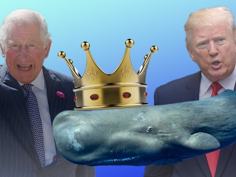 Donald Trump calls Prince Charles 'the Prince of Whales'