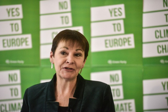 LONDON, UNITED KINGDOM - MAY 8: Caroline Lucas MP speaks at the launch of the Green Party's European Election Campaign on May 8, 2019 in London, England. (Photo by Peter Summers/Getty Images)