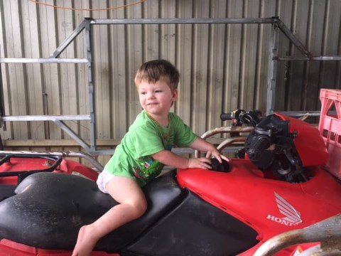 Toddler, 2, missing from cattle station 'feared eaten by crocodiles'
