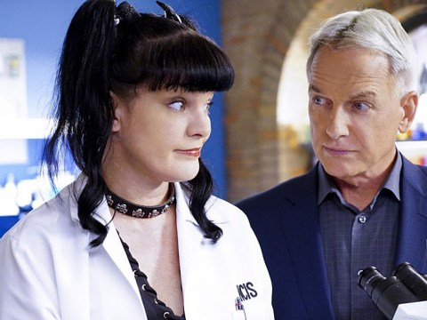 Pauley Perrette's allegations against NCIS star Mark Harmon have been 'resolved'