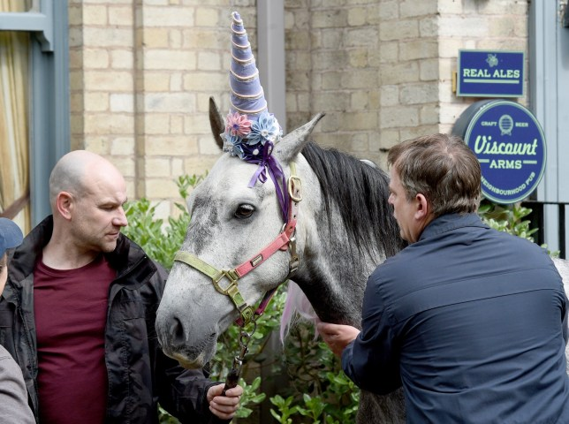 Steve and Tim have a money making idea by hiring out Sally's horse Tiny as a unicorn for kids parties, do they have a point or will they be left with long faces? PIC BY MARK CAMPBELL/MCPIX 07778 526193