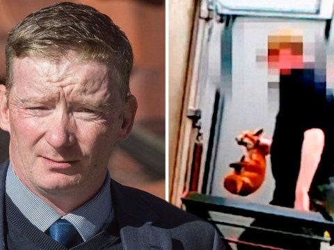 Couple who fed live fox cubs to hounds to 'give them a taste for blood' avoid jail