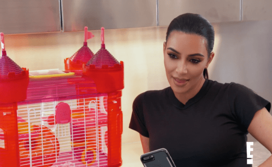 Kim Kardashian on Keeping Up With The Kardashians