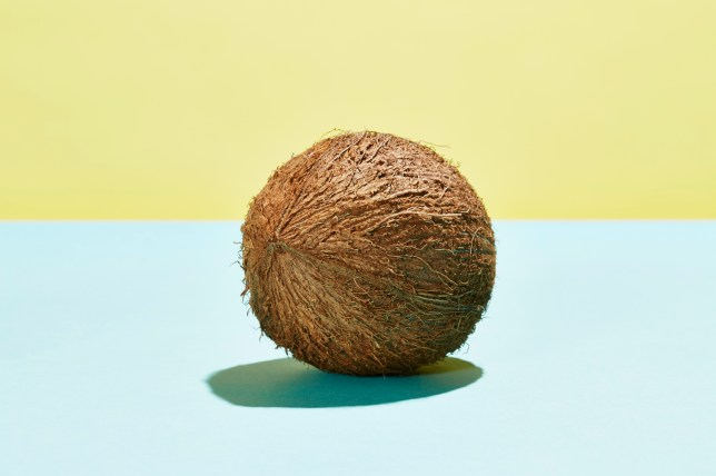 Spell coconut' is the newest meme that might spice up your sex life