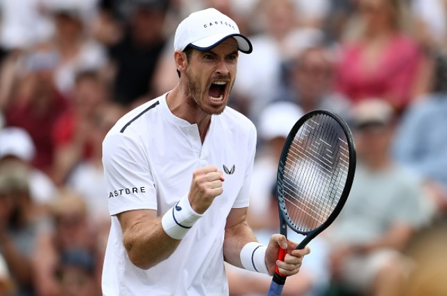 Andy Murray celebrates winning a point at Wimbledon
