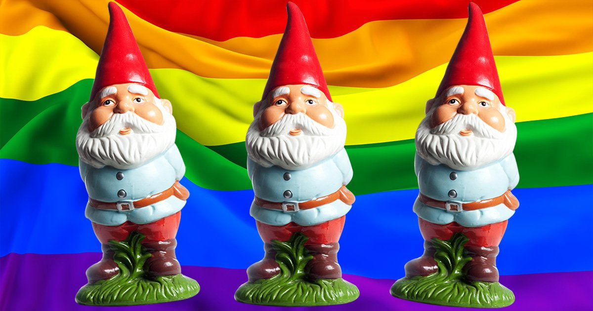 He suspicion gnomes should not have a sexuality