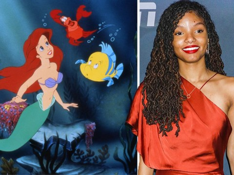 Halle Bailey says The Little Mermaid role is 'dream come true' despite shocking backlash