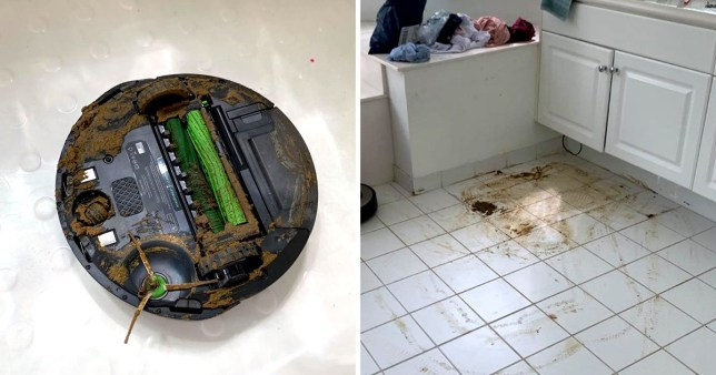 Roomba robot vacuum covered in shit, next to pic of kitchen floor covered in shit