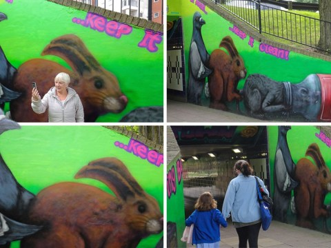 Town's new mural shows pigeon doing rabbit doggy-style