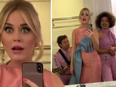Katy Perry blesses fans with bizarre bathroom performance of Never Really Over