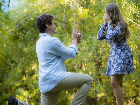 Bindi Irwin shares adorable pictures from her proposal as Chandler Powell gets down on one knee
