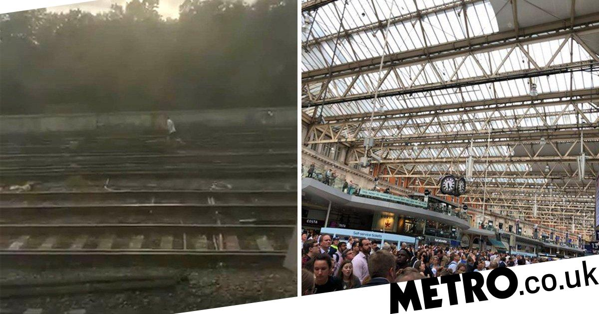 London Waterloo: Man chases dog down electrified train tracks