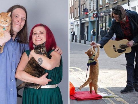 Homeless man and cat who saved him both find love after living on streets
