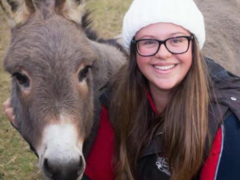 Manchester bombing survivor treats PTSD with donkey therapy