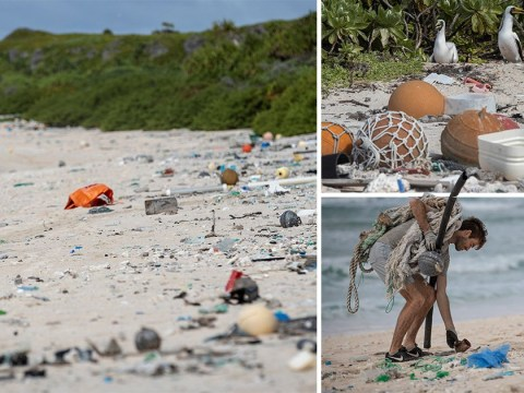 World's most polluted island is choking to death with plastic