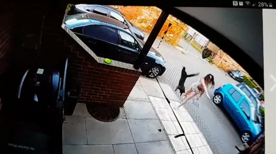 "The moment April Hawes, 36 throws a kitten at her neighbours house in Dereham, Norfolk. See SWNS copy SWCAkitten: A couple were left horrified after their CCTV captured the shocking moment their neighbour threw their kitten at their house after she was fed up with it. April Hawes, 36, can be heard aggressively shouting ""I am going to knock her out"" as she pelts the young black tabby cat by its throat at the house. Hawes appeared at King's Lynn magistrates, in Norfolk on Friday (28/6) where she admitted picking up two cats and flinging them at her neighbour's home."