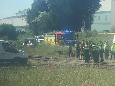 Two rail workers dead after being hit by train
