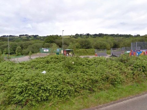 Hunt for man who sexually assaulted girl, 12, next to skate park