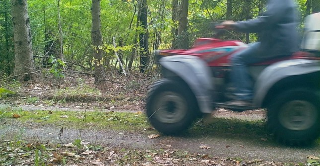 An ATV quickly zipped by a trail camera and created an interesting blurred photograph.